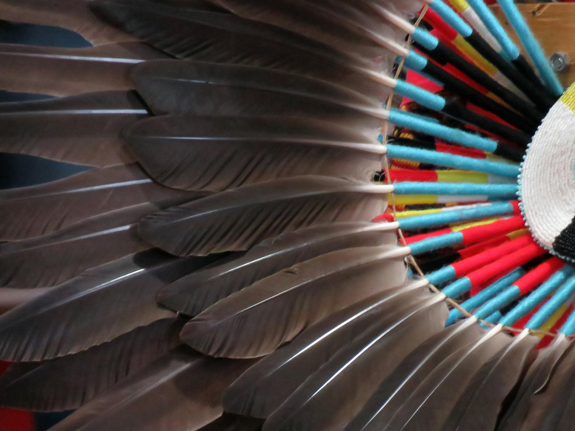 image-of-feathers